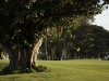 Golfnow-Photo-11-Green-