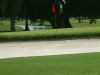 golf-course-for-web-site-027