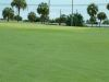 golf-course-for-web-site-057