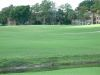 golf-course-for-web-site-078