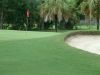 golf-course-for-web-site-005