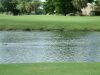 golf-course-for-web-site-044
